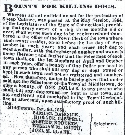 1864 - Register your dog--or else
